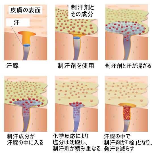 制汗剤の仕組み